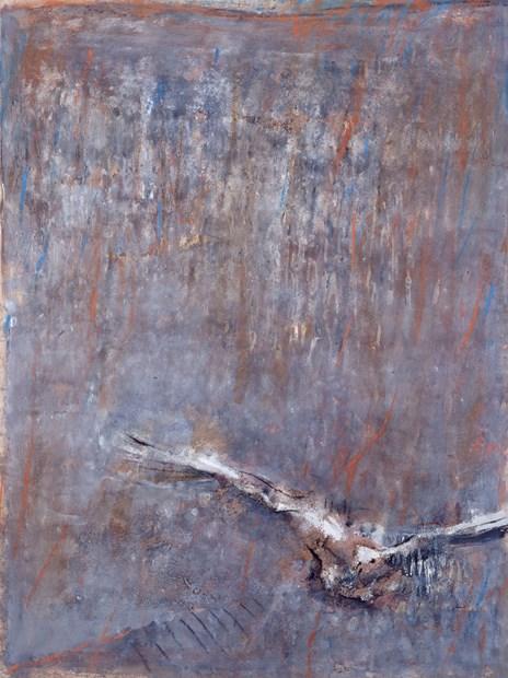 Swooping Bird 1986-87
