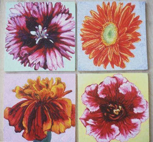 Bloom x 4