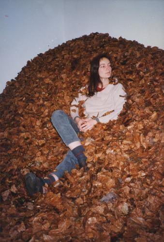 Beech leaf installation - Credit: Jo Aris