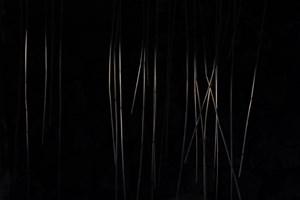 'Soundings'  for the Exhibition 'Vassen Susar' in Finland