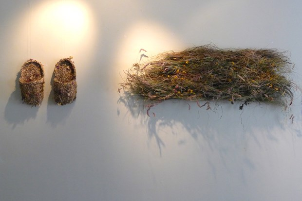 'Clothed by plants' Exhibition Pittenweem, Scotland - Credit: C.Dear