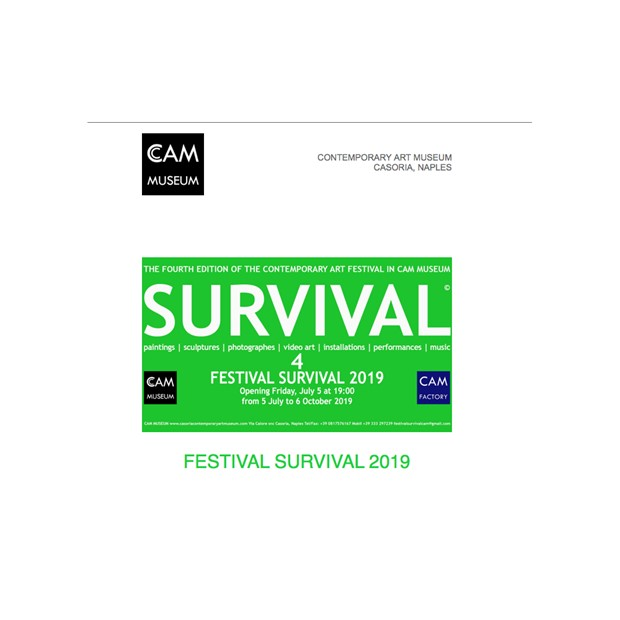 Festival Survival 2019, by Paul Critchley