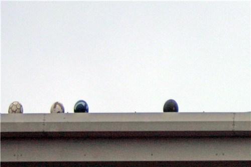 'Dead Roof Balls #5'