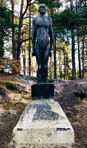 Hogmoor Inclosure Sentinels in situ, by David Lloyd