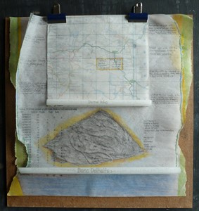 mapping & musing: BATS, BIRDS & BURROWS, by Sue Purcell