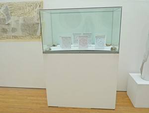 'CABINET # 1' 'Crystal forms from the 7 crystal systems – BOX SET', by Sue Purcell