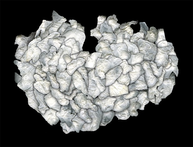 Pocket Remains : #119-221