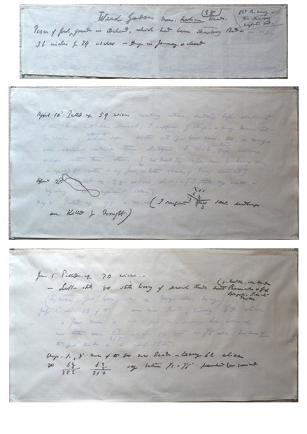Walking A line Through Darwin's Notes