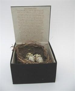Nest Egg #2