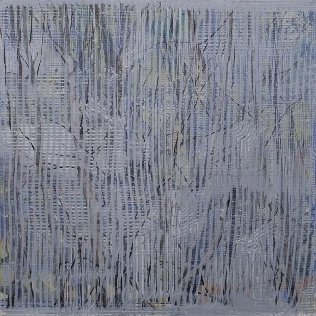 Birches in Mist