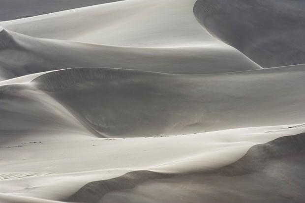 Ocean | Desert