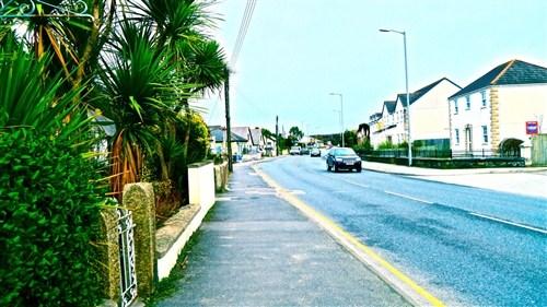Palm-trees-and-houses/e74/4
