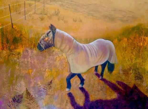 Sun-Barded Horse