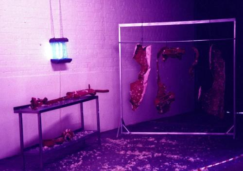 Dead meat, installation