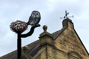Horbury Owl, by Bruce Williams