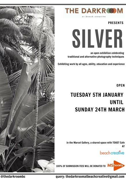 SILVER, by Mike Tedder