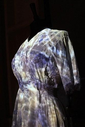 Communicating Bacteria Dress