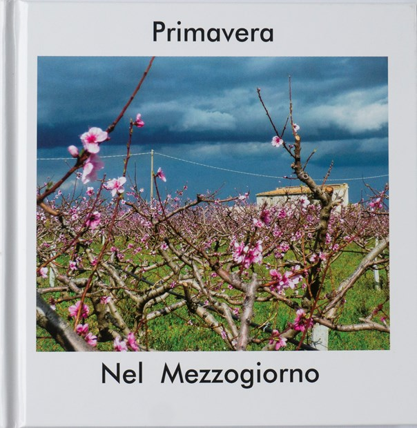 Primavera Nel Mezzogiorno