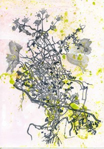 Bucks Umbelliferae on marbled paper, by Emma Williams