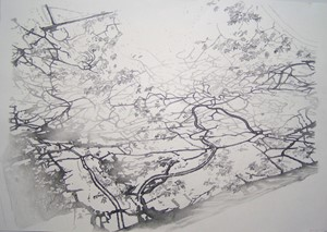 London Branches (with leaves), by Emma Williams