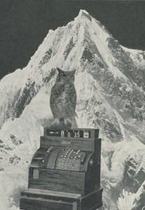 Alpine Collage, by Daniel Lehan