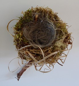 Flown the Nest, by Karen Moser