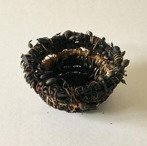 Seaweed creel, by Karen Moser