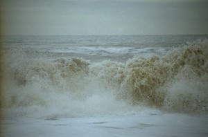 Waveform 4, Walcott, by Jeremy Webb
