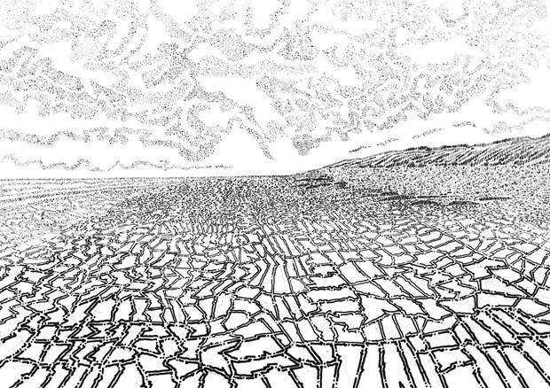 Fields of Marks