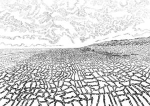 Fields of Marks, by Charlotte Harker