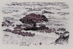 Umbrella Tree, by Charlotte Harker