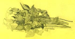 Rose, by Charlotte David Harker