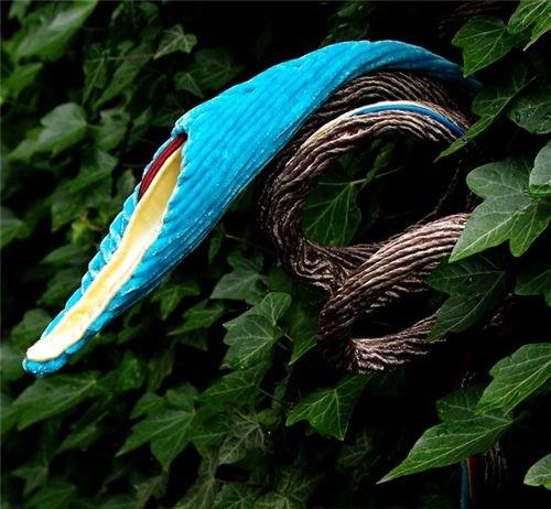 Study (Blue Pod) in ivy