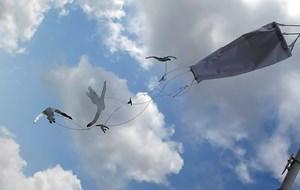 Flock of Flying People