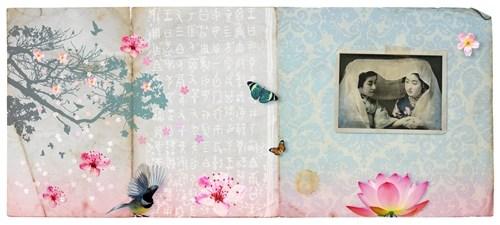 a love of sakura