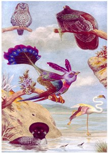 Imaginary Page from a Book of Birds, No.2
