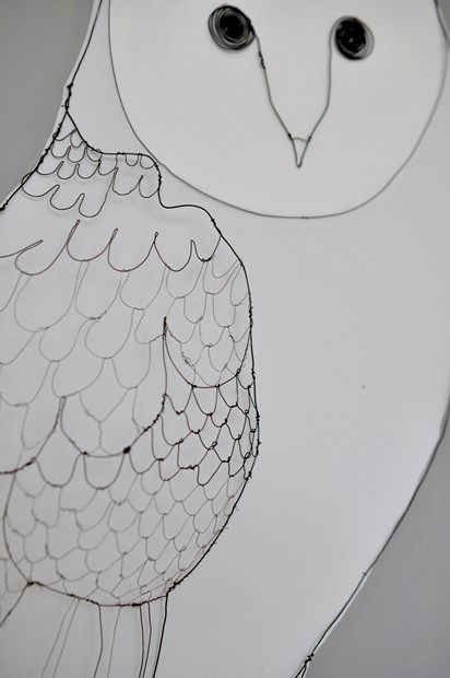 Girl with Owl.