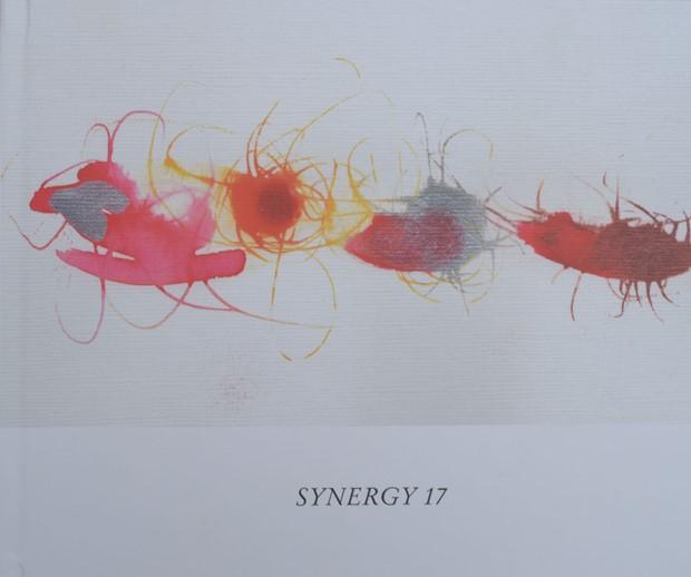 SYNERGY 17