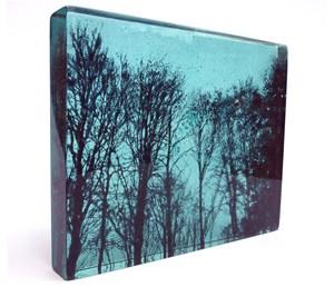 Treescape, by Helen Slater