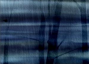 Sunderland Short Film Festival, by Michael Salkeld