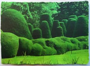 Winner of the Westmorland Landscape Prize, by Sharon Baker