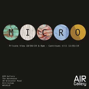 Micro at Air Gallery, by Sharon Baker