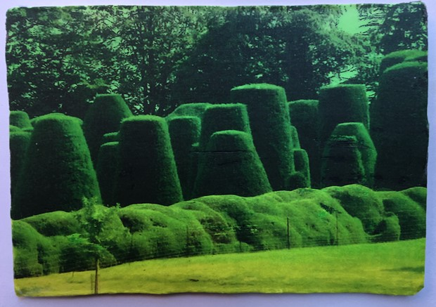 Year of the Print at Winterbourne House & Gardens, University of Birmingham, by Sharon Baker