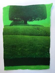 Packwood Fragment 21, by Sharon Baker