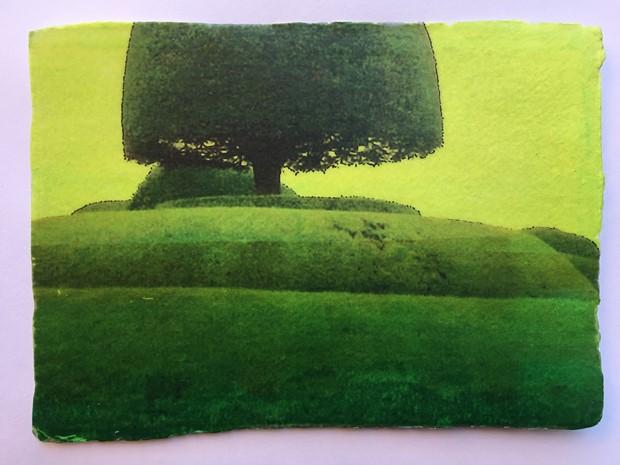 Packwood Fragment 17