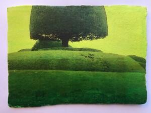Packwood Fragment 17, by Sharon Baker