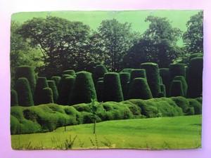 Packwood Fragment 18, by Sharon Baker