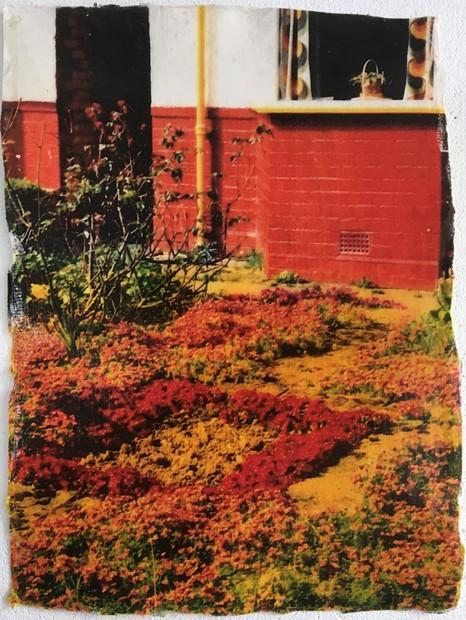 Riversdale Road Front and Back Garden 1992 I - Credit: Sharon Baker