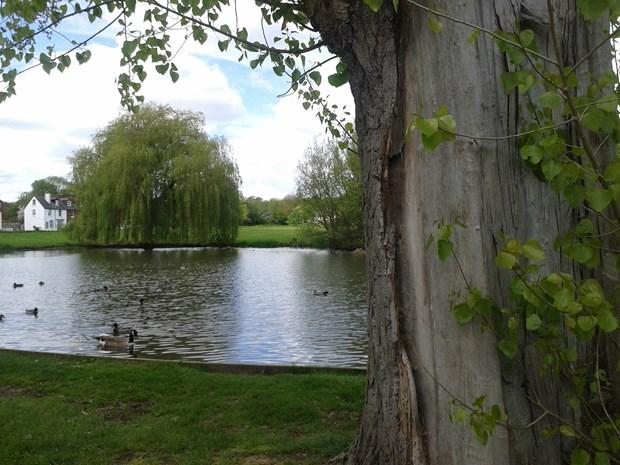 Theydon Bois, Essex