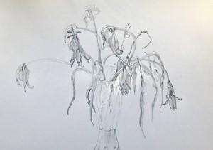 Tulips Dead, by Sue Corr